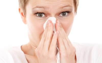 Everything You Need to Know About Allergies in Southern Utah